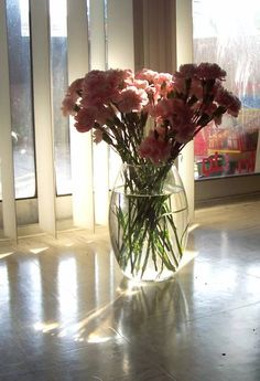carnations - WetCanvas | Reference Image Library