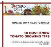 Website on growing tomatoes (planting, staking, fertilizing, identifying diseases, etc.) More helpful info on growing tomatoes at http://www.tomatodirt.com/growing-tomatoes.html.