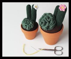 """Curly Cactus - Free Amigurumi Pattern - PDF Format - Click to """"download"""" here: http://www.ravelry.com/patterns/library/curly-cactus"""
