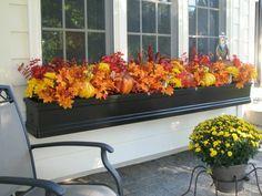 herbstblumen balkon fenster herbstdekoration