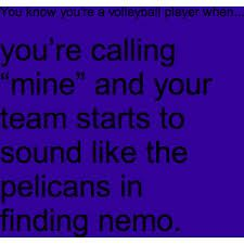 this is funny because the name of my team is the dory's, like from finding nemo!