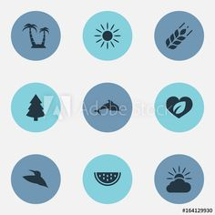 Vector Illustration Set Of Simple Ecology Icons. Elements Grain, Grampus, Reef And Other Synonyms Slice, Sunrise And Tree. Ecology, Sunrise, Clouds, Icons, Simple, Illustration, Symbols, Illustrations, Ikon