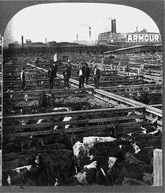 stuck in poverty in conditions at the slaughterhouse by upton sinclair Get an answer for 'what was the significance of upton sinclair's book the jungle' and find homework tries to survive by working for very low wages in a chicago slaughterhouse the working conditions are notoriously these immigrants find these hopes reduced to numbing poverty.
