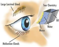 Home Remedies For Dry Eyes - Natural Treatments & Cure For Dry Eyes | Search Home Remedy