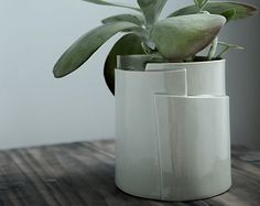Jardinera de porcelana ovalada grande colección por taylorceramics