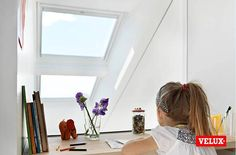 We have no scientific proof but white finish roof windows could make you more intelligent....