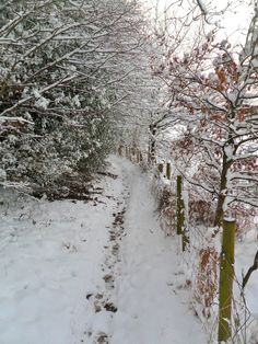 Footpath in the snow, Druids Heath, Walsall, England. All Original Photography by http://vwcampervan-aldridge.tumblr.com