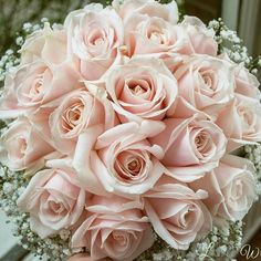 blush rose and gyp bouquet - Google Search