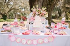 outdoor baby shower inspiration, plantation baby shower