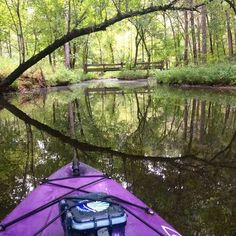 Enjoy tranquil Oklahoma scenes like this by kayak at Cedar Lake National Recreation Area where visitors can camp, hike, fish and paddle.