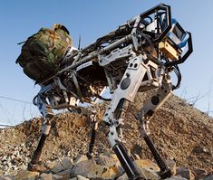 BigDog - look up the vid.  Most powerful all terrain, military style robot walking dog, woof