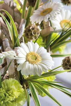 Close-up of a white gerbera bouquet in a white vase #whitegerberas #inspiration #colouredbygerbera #dutchgerbera