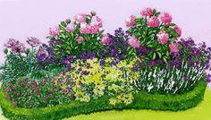1 – Мак восточный (Papaver orientale) 'Graue Witwe', 2 – Пион молочноцветковый (Paeonia lactiflora) 'Triomphe de L'Exposition de Lille', 3 – Герань величественная (Geranium magnificum), 4 – Гипсофила метельчатая (Gypsophila paniculata) 'Bristol Fairy', 5 – Манжетка мягкая (Alchemilla mollis), 6 – Котовник кистевидный (Nepeta racemosa) 'Snowflake', 7 – Герань кроваво-красная (Geranium sanguineum) 'Apfelbluete'.