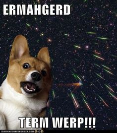 ERMAHGERD TERM SPERCE CERGI!