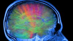 Neuroscience Learns What Buddhism Has Known For Ages: There is No Constant Self - Ideapod blog