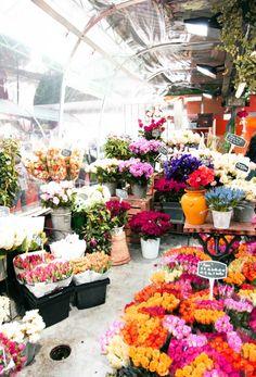 Parisian flower market........ | Emma Elwin