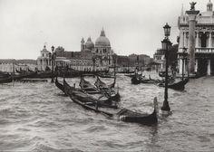 4 novembre 1966 Acqua alta +194 cm