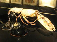 Dalí's lobster phone.