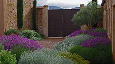 Farmhouse garden/patio in Consuegra, Toledo Dry Garden, Gravel Garden, Love Garden, Garden Gates, Garden Plants, Garden Landscaping, Leafy Plants, Garden Landscape Design, Landscape Architecture