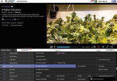 Pluto TV takes $13M for its free linear TV streaming service   VentureBeat   Media   by Tom Cheredar