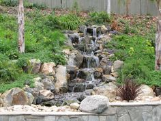 San Diego Ponds Specializes In The Design And Construction Of Koi Ponds,  Natural Rock Waterfalls, Streams And Water Gardens. San Diego Ponds Has  Building ...