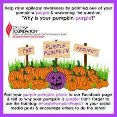 Join us in raising #EpilepsyAwareness this #Fall with a fun #craft project. Turn one of your pumpkins #purple for #epilepsy!