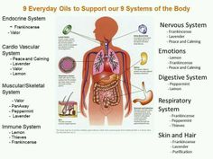 57 Best Young Living Essential Oils Images Essential