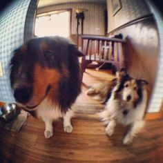 Wordless Wednesday #168 – Fun with an Olloclip
