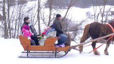 KOLLÁROVCI- ROĽNIČKY (Oficiálny videoklip) 11/2013 Music Songs, Seasons, Album, Facebook, Youtube, Holiday, Christmas, Xmas, Vacations