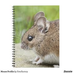 Mouse Profile Notebook Adorable profile photograph of a mouse.