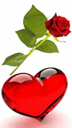 Heart Art, I Love Heart, My Heart, I Love You, Heart Images, Love Images, Beautiful Gif, Beautiful Roses, Corazones Gif