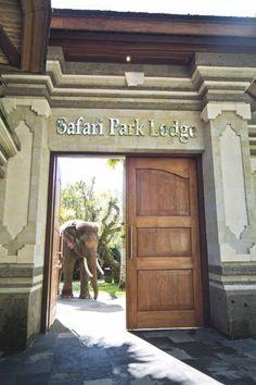 Bali Elephant Safari Park Lodge