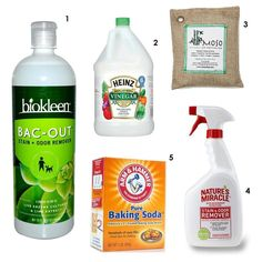 As nice as it would be to always keep a perfectly clean, perfectly smelling house — the truth is, bad odors happen. Whether it's smelly upholstery from a great thrift store find, a pet's potty training accident, or a party that needs a massive cleanup, funky smell are an unavoidable part of everyday life. With that in mind, here are the 5 products we'd recommend always having in the house to combat and remove odors.