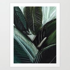 Lush Lux Greeting Card by Dan Hobday Art - Set of 3 Folded Cards x Lush, Canvas Prints, Art Prints, Diy Frame, Folded Cards, Plant Leaves, Just For You, Artwork, Artist