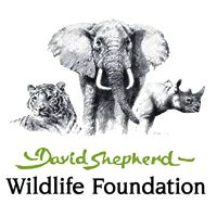 Wildlife Artist Of The Year Competition 2016