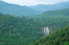 The Forest - Klong Lan Waterfall   Location : Klong Lan National Park Kamphaeng Phet province Thailand