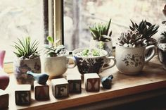 Great DIY Mother's Day gifts. Teacup Gardens. Use fresh soil and plant herbs or succulents; transplant or starts from seeds. Makes for a Beautiful gift