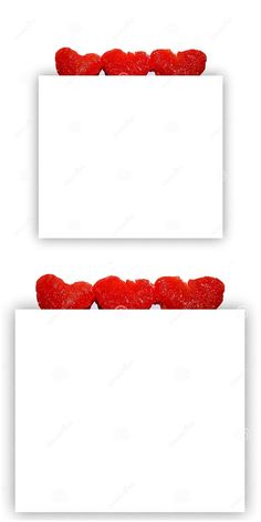 Fresh Grapefruit Slices On Top Of A Big White Square Stock Image - Image of festive, card: 178332921 Text Frame, Grapefruit, Festive, Greeting Cards, Concept, Posts, Stock Photos, Fresh, Big