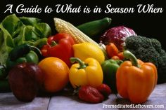A Guide to what is in season when