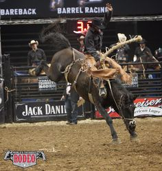 3rd in the World (2011) Saddle Bronc Rider, Wade Sundell, at World's Toughest Rodeo in St. Paul, Minnesota