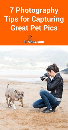Having a hard time capturing the unimaginable adorableness of our pups with your camera? Check out these photography tips to help bring out the best shutterbug in you. Pet Photography Tips, Animal Photography, Beginner Photography, Learn Photography, Photography Lessons, Family Photography, Funny Dog Pictures, Funny Photos, Animal Pictures