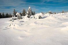 Im Winter kann man sich herrliche Schneeschuhwanderungen in der Umgebung von Baden-Baden vornehmen.  Wanderlust, Hotel am Sophienpark, Baden-Baden http://www.hotel-am-sophienpark.de/