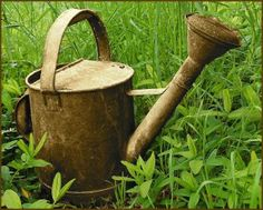 Vanhassa ja kulahtaneessa on vain sitä jotakin! Summer Garden, Water Garden, Garden Pots, Vegetable Garden, Home And Garden, Decoupage, English Country Gardens, Water Me, Down On The Farm