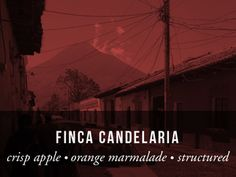 First had this at The Vortex in Asheville NC and loved it. Finca Candelaria. May be the best coffee I've ever had. But then my memory is beginning to get fuzzy as I age. Great coffee! fincacan.jpg