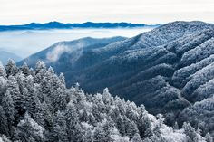 The Great Smoky Mountains National Park, the most visited national park in the United States! There is no entrance fee, but if you are looking to save on your next visit to the parks, check out this article: http://reveriechaser.com/how-to-save-national-parks-usa/