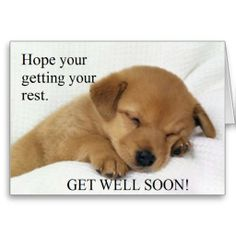 Feel Better Quotes Get Well Soon Messages And Get Well Soon Quotes  Pinterest