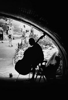 double bass. Central Park, NYC