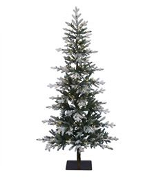 Clifton Pine Christmas Tree