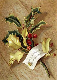 Vintage Christmas card, holly