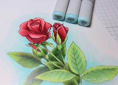 From Sharon Harnist via www.PaperFections.com Coloring With Copic Reds